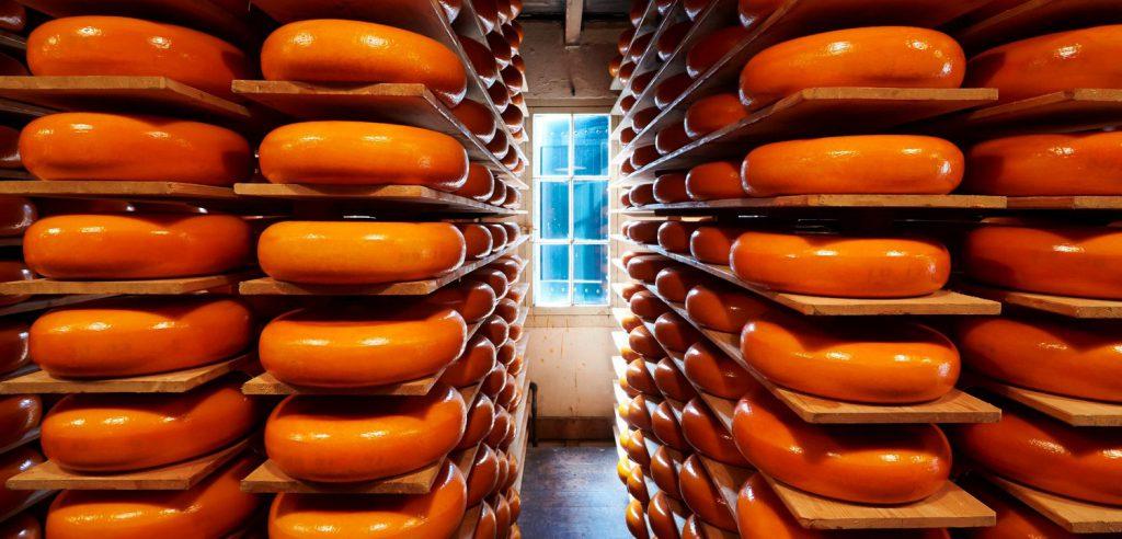 Großhandel Käse